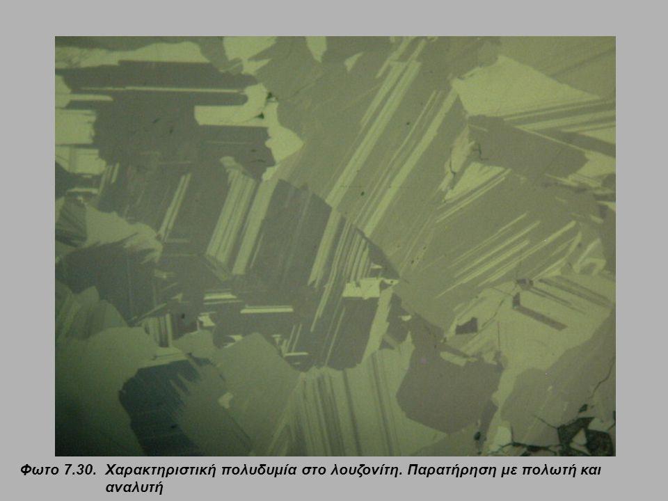 Φωτο 7.30.Χαρακτηριστική πολυδυμία στο λουζονίτη. Παρατήρηση με πολωτή και αναλυτή