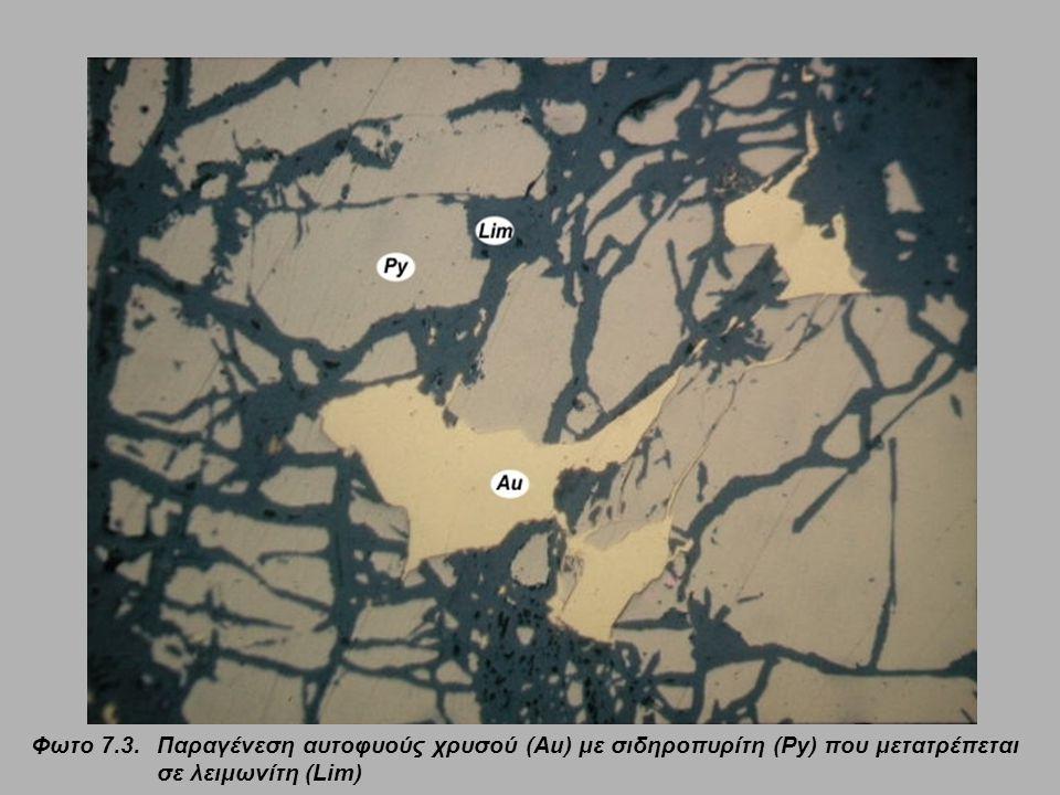 Φωτο 7.3.Παραγένεση αυτοφυούς χρυσού (Au) με σιδηροπυρίτη (Py) που μετατρέπεται σε λειμωνίτη (Lim)