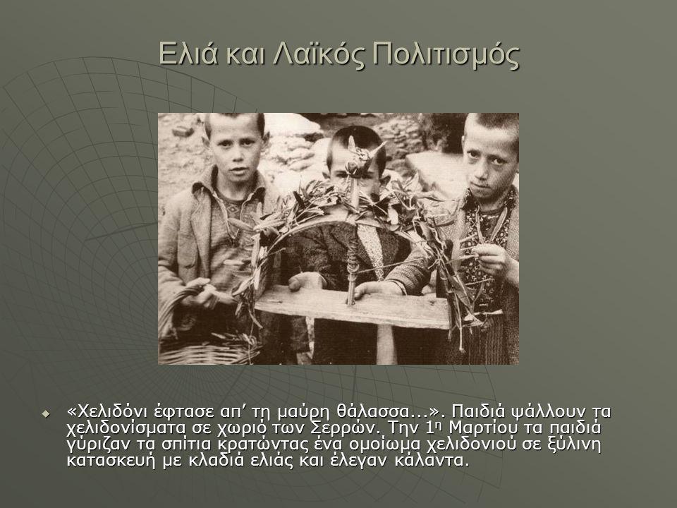 Ελιά και Λαϊκός Πολιτισμός  «Χελιδόνι έφτασε απ' τη μαύρη θάλασσα...». Παιδιά ψάλλουν τα χελιδονίσματα σε χωριό των Σερρών. Την 1 η Μαρτίου τα παιδιά
