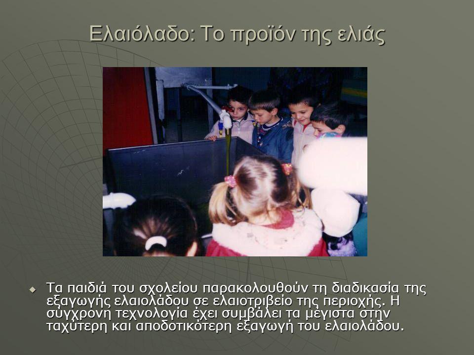 Ελαιόλαδο: Το προϊόν της ελιάς  Τα παιδιά του σχολείου παρακολουθούν τη διαδικασία της εξαγωγής ελαιολάδου σε ελαιοτριβείο της περιοχής. Η σύγχρονη τ