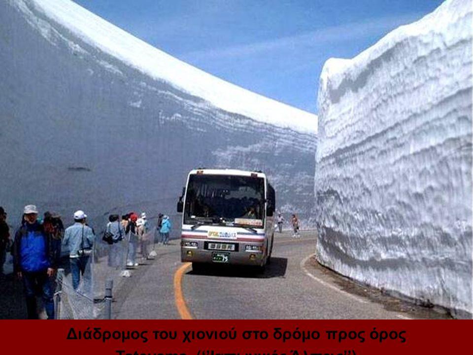 Διάδρομος του χιονιού στο δρόμο προς όρος Tateyama. (''Ιαπωνικές Άλπεις'')
