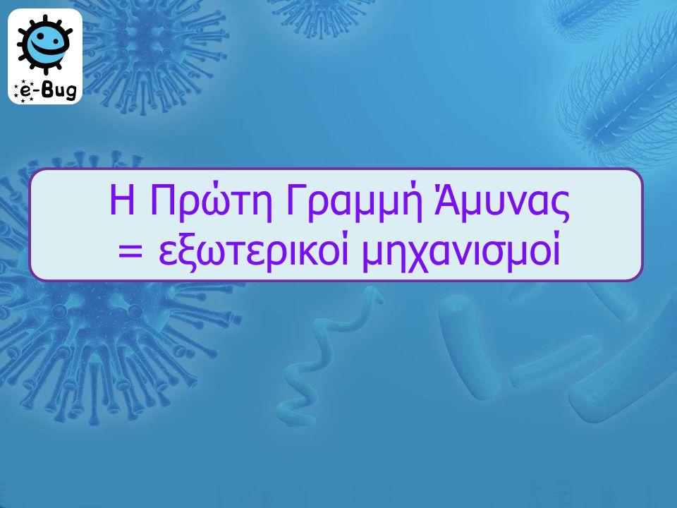 Εξωτερικοί μ ηχανισ μ οί ά μ υνας …  Το δέρμα  Ο ιδρώτας, το σάλιο και τα δάκρυα  Ο βλεφαριδοφόρος επιθηλιακός ιστός  Ο πεπτικός σωλήνας