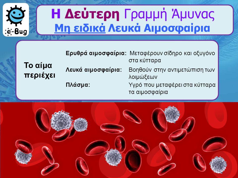 Η Δεύτερη Γραμμή Άμυνας Μη ειδικά Λευκά Αιμοσφαίρια Ερυθρά αιμοσφαίρια: Μεταφέρουν σίδηρο και οξυγόνο στα κύτταρα Λευκά αιμοσφαίρια:Βοηθούν στην αντιμ
