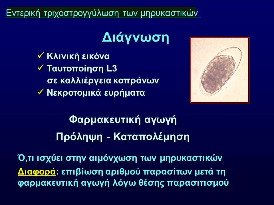 Εντερική τ μηρυκαστικών Εντερική τριχοστρογγύλωση των μηρυκαστικών Κλινική εικόνα Κλινική εικόνα Ταυτοποίηση L3 Ταυτοποίηση L3 σε καλλιέργεια κοπράνων σε καλλιέργεια κοπράνων Νεκροτομικά ευρήματα Νεκροτομικά ευρήματα Διάγνωση Φαρμακευτική αγωγή Πρόληψη - Καταπολέμηση Ό,τι ισχύει στην αιμόνχωση των μηρυκαστικών Διαφορά: επιβίωση αριθμού παρασίτων μετά τη φαρμακευτική αγωγή λόγω θέσης παρασιτισμού
