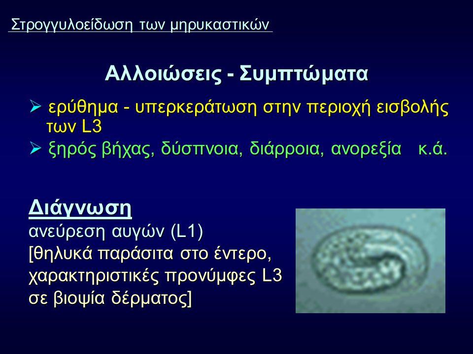 Αλλοιώσεις - Συμπτώματα  ερύθημα - υπερκεράτωση στην περιοχή εισβολής των L3  ξηρός βήχας, δύσπνοια, διάρροια, ανορεξία κ.ά. Διάγνωση ανεύρεση αυγών