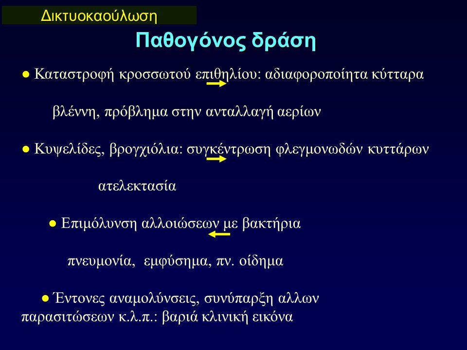 Δικτυοκαούλωση Παθογόνος δράση ● Καταστροφή κροσσωτού επιθηλίου: αδιαφοροποίητα κύτταρα βλέννη, πρόβλημα στην ανταλλαγή αερίων ● Κυψελίδες, βρογχιόλια: συγκέντρωση φλεγμονωδών κυττάρων ατελεκτασία ● Επιμόλυνση αλλοιώσεων με βακτήρια πνευμονία, εμφύσημα, πν.