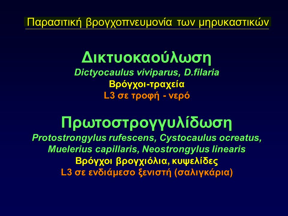 Παρασιτική βρογχοπνευμονία των μηρυκαστικών Δικτυοκαούλωση Dictyocaulus viviparus, D.filaria Βρόγχοι-τραχεία L3 σε τροφή - νερό Πρωτοστρογγυλίδωση Protostrongylus rufescens, Cystocaulus ocreatus, Muelerius capillaris, Neostrongylus linearis Βρόγχοι βρογχιόλια, κυψελίδες L3 σε ενδιάμεσο ξενιστή (σαλιγκάρια)