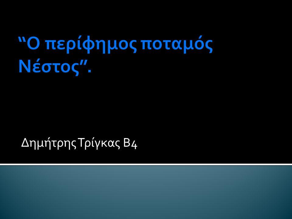 Δημήτρης Τρίγκας Β4