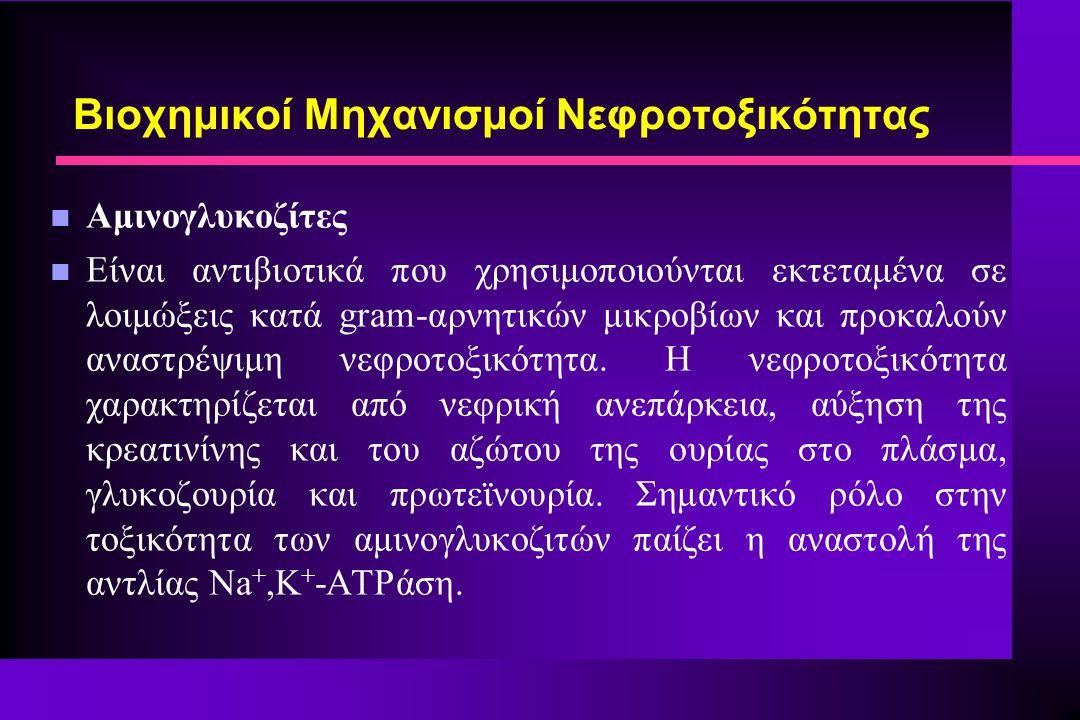 n Αμινογλυκοζίτες n Είναι αντιβιοτικά που χρησιμοποιούνται εκτεταμένα σε λοιμώξεις κατά gram-αρνητικών μικροβίων και προκαλούν αναστρέψιμη νεφροτοξικό