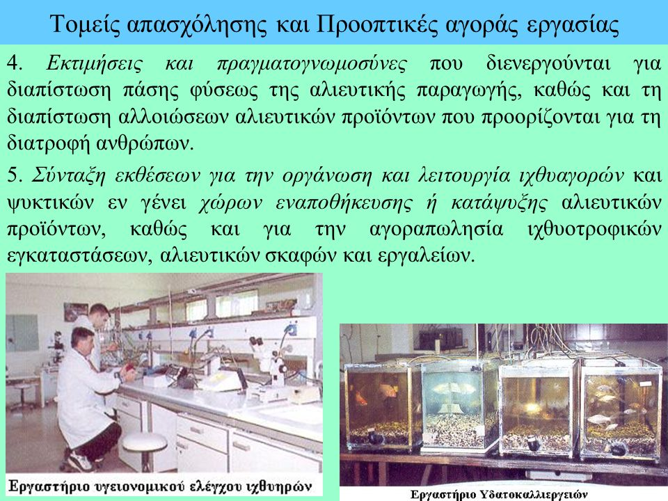 Τομείς απασχόλησης και Προοπτικές αγοράς εργασίας 4. Εκτιμήσεις και πραγματογνωμοσύνες που διενεργούνται για διαπίστωση πάσης φύσεως της αλιευτικής πα