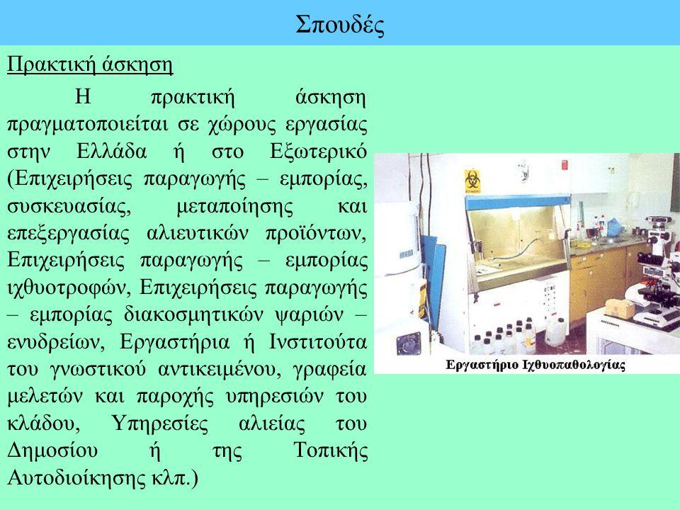 Σπουδές Πρακτική άσκηση Η πρακτική άσκηση πραγματοποιείται σε χώρους εργασίας στην Ελλάδα ή στο Εξωτερικό (Επιχειρήσεις παραγωγής – εμπορίας, συσκευασ