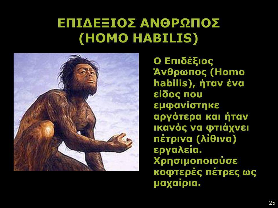 24 Οι αυστραλοπίθηκοι ήταν τα πρώτα όντα που έμοιαζαν με ανθρώπους και εμφανίστηκαν ανατολικά της Αφρικής (ανατολικά στα λατινικά: australis). Έβρισκα