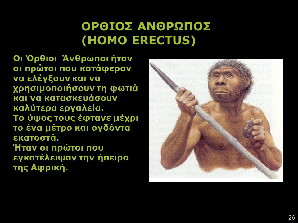 25 Ο Επιδέξιος Άνθρωπος (Homo habilis), ήταν ένα είδος που εμφανίστηκε αργότερα και ήταν ικανός να φτιάχνει πέτρινα (λίθινα) εργαλεία. Χρησιμοποιούσε