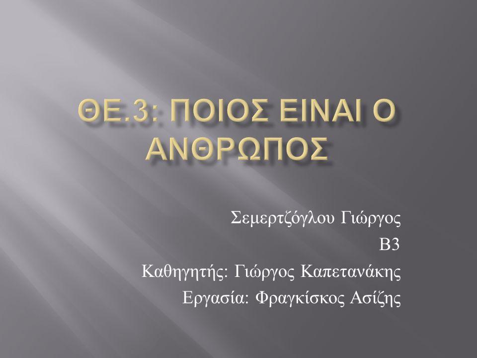 Σεμερτζόγλου Γιώργος Β 3 Καθηγητής : Γιώργος Καπετανάκης Εργασία : Φραγκίσκος Ασίζης