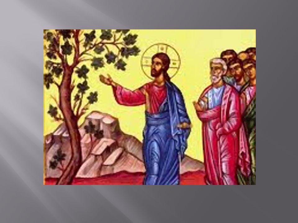 Ο Ιησούς μίλαγε με παραβολές, για να διδάξει τους μαθητές του αλλά και τον λαό του Ισραήλ.