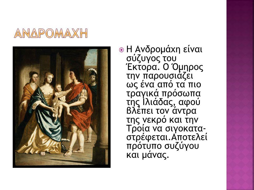  Η Ανδρομάχη είναι σύζυγος του Έκτορα. Ο Όμηρος την παρουσιάζει ως ένα από τα πιο τραγικά πρόσωπα της Ιλιάδας, αφού βλέπει τον άντρα της νεκρό και τη