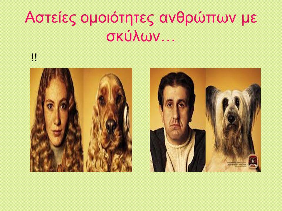 Αστείες ομοιότητες ανθρώπων με σκύλων… !!