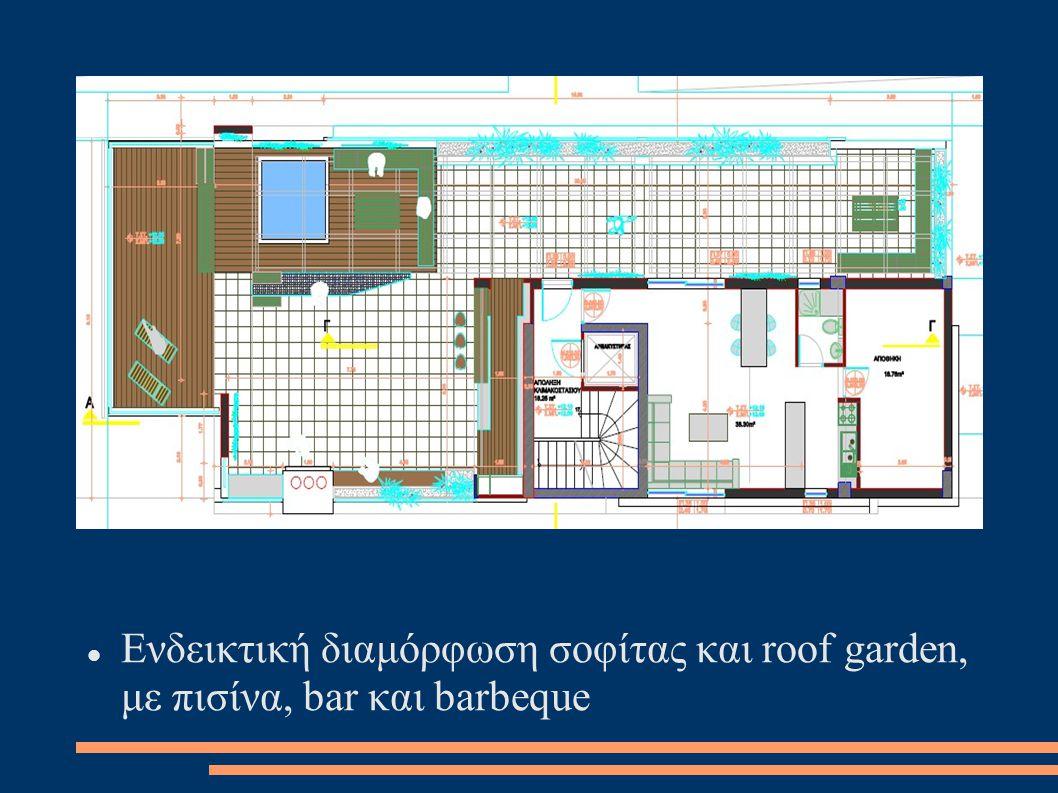 Ενδεικτική διαμόρφωση σοφίτας και roof garden, με πισίνα, bar και barbeque