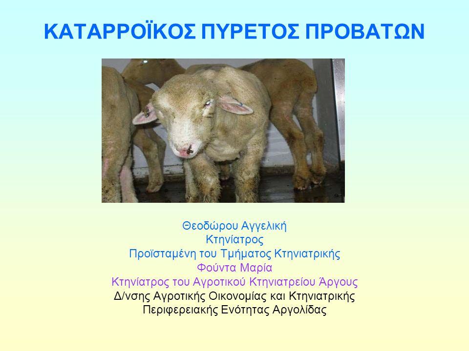 ΚΑΤΑΡΡΟΪΚΟΣ ΠΥΡΕΤΟΣ ΠΡΟΒΑΤΩΝ Μεταδίδεται με ένα είδος σκνίπας (Culicoides imicola) Προσβάλλει όλα τα κατοικίδια και άγρια μηρυκαστικά (Αιγοπρόβατα, Βοοειδή, Ελάφια, Καμήλες) Κλινικά συμπτώματα εμφανίζουν μόνο τα πρόβατα, σπανιότερα οι Άιγες Τα βοοειδή και τα άλλα μηρυκαστικά αποτελούν φορείς του ιού στο αίμα τους.