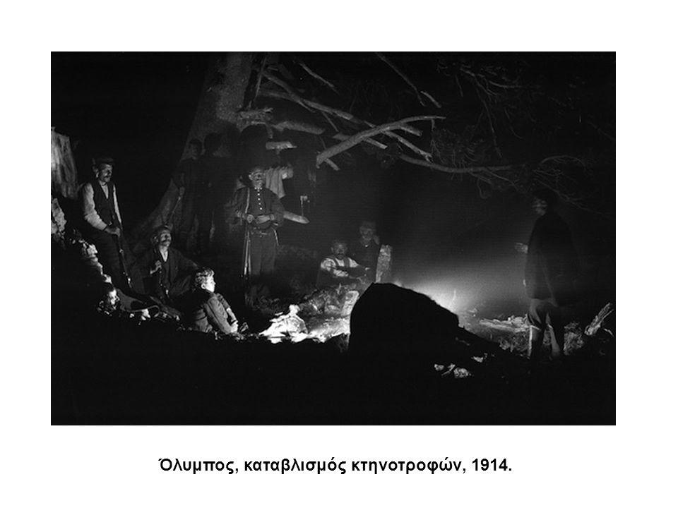 Όλυμπος, καταβλισμός κτηνοτροφών, 1914.