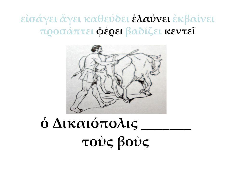ὁ Δικαιόπολις _______ τοὺς βοῦς