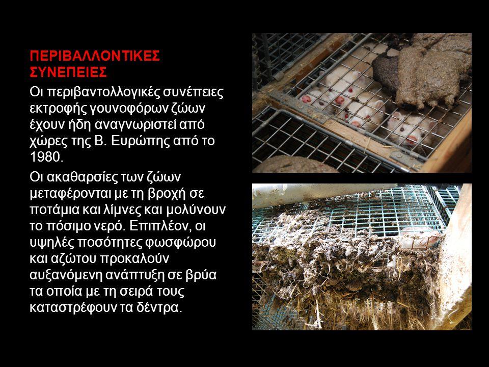 ΠΕΡΙΒΑΛΛΟΝΤΙΚΕΣ ΣΥΝΕΠΕΙΕΣ Οι περιβαντολλογικές συνέπειες εκτροφής γουνοφόρων ζώων έχουν ήδη αναγνωριστεί από χώρες της Β.