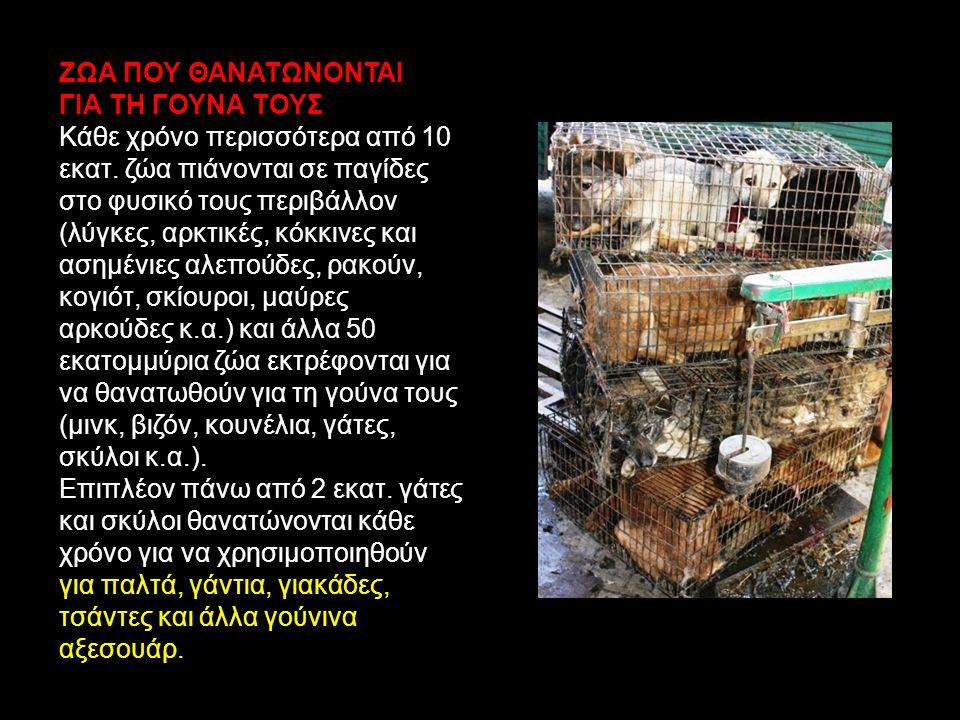 Για ένα γούνινο παλτό χρειάζονται κατά μέσον όρο 40 έως 70 ζώα ανάλογα με το μέγεθος του ζώου που χρησιμοποιείται Παραδείγματα αριθμού ζώων ανά είδος που θανατώνονται για 100 τετραγωνικά εκατοστά γούνας: Σκυλιά 25 Γάτες 40 Σκίουροι 400-500 Κογιότ 16 Λύγκες 18 Μινκ 60 Μαρσυπόμυδες 45 Βίδρες 20 Αλεπούδες 42 Ρακούν 40 Λέμμοι 50 Φώκιες 8 Κάστορες 15