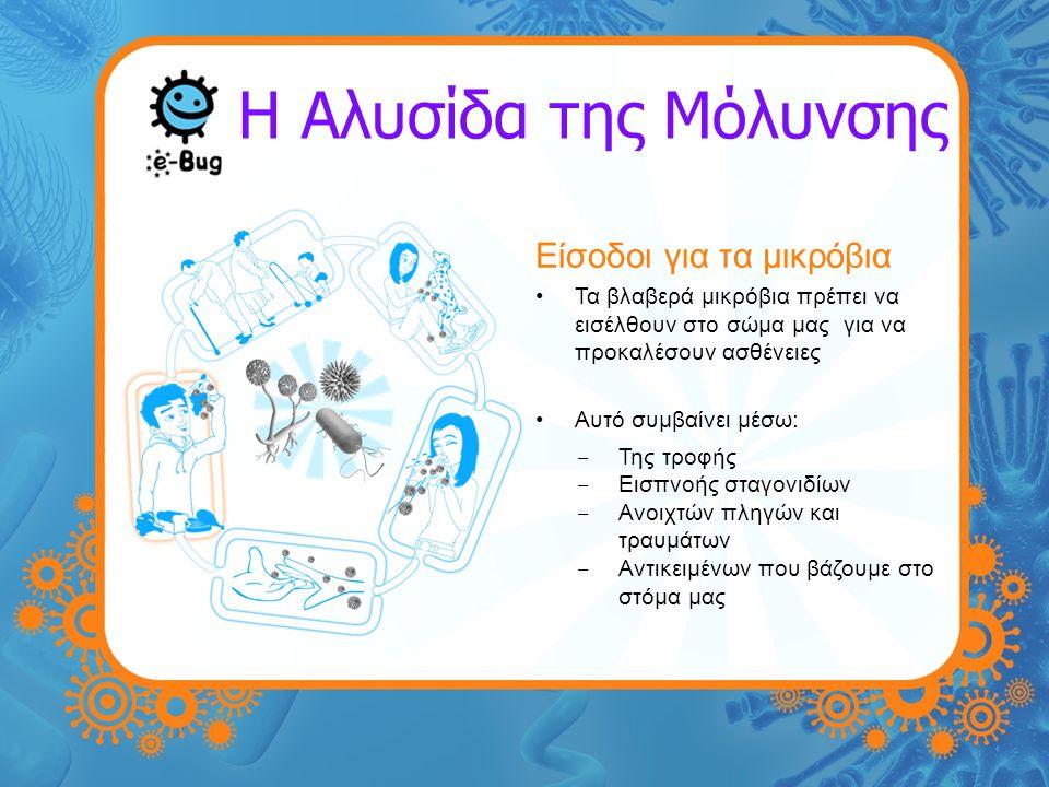 Η Αλυσίδα της Μόλυνσης Είσοδοι για τα μικρόβια Τα βλαβερά μικρόβια πρέπει να εισέλθουν στο σώμα μας για να προκαλέσουν ασθένειες Αυτό συμβαίνει μέσω: