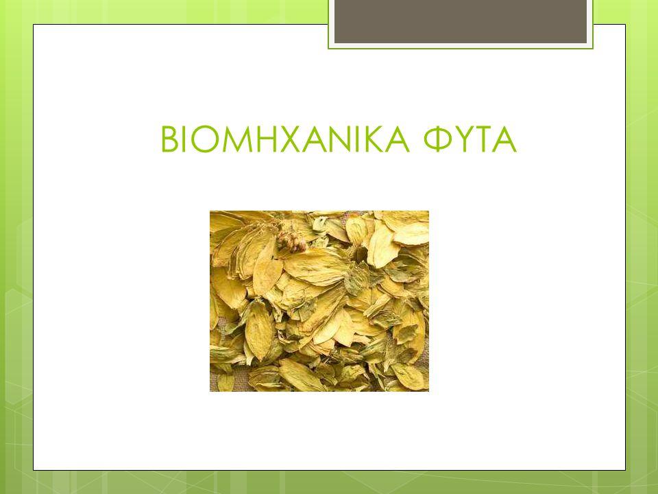 Οι περιοχές που παράγονται τα εσπεριδοειδή  Ηγουμενίτσα, Άρτα, Πρέβεζα, Πύργος, Σπάρτη, Πόρος, Χίος, Ρόδος, και Κρήτη.