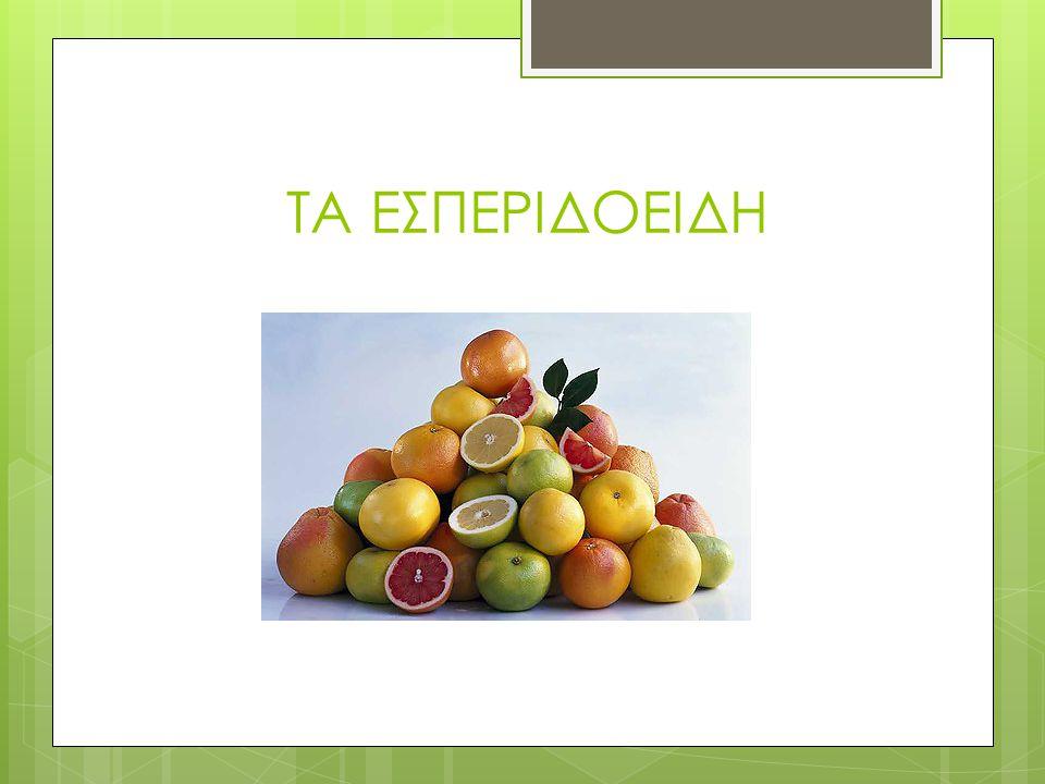 Οι περιοχές που παράγονται τα σταφύλια και το κρασί  Θεσσαλονίκη, Χαλκιδική, Γρεβενά, Κέρκυρα, Βόλος, Κεφαλλoνιά, Πάτρα, Κόρινθος, Πύργος, Τρίπολη, Α
