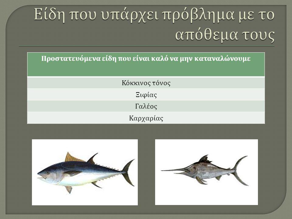 Προστατευόμενα είδη που είναι καλό να μην καταναλώνουμε Κόκκινος τόνος Ξιφίας Γαλέος Καρχαρίας