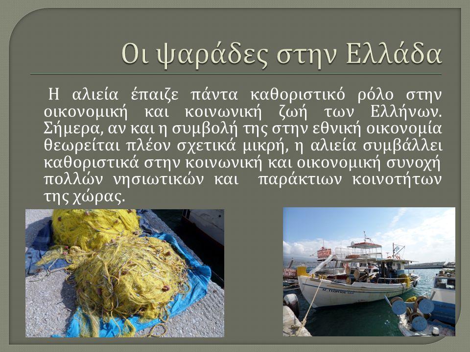Η αλιεία έπαιζε πάντα καθοριστικό ρόλο στην οικονομική και κοινωνική ζωή των Ελλήνων. Σήμερα, αν και η συμβολή της στην εθνική οικονομία θεωρείται πλέ