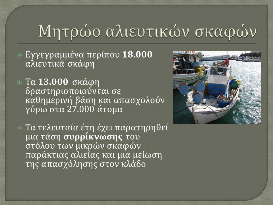  Εγγεγραμμένα περίπου 18.000 αλιευτικά σκάφη  Τα 13.000 σκάφη δραστηριοποιούνται σε καθημερινή βάση και απασχολούν γύρω στα 27.000 άτο µ α  Τα τελε