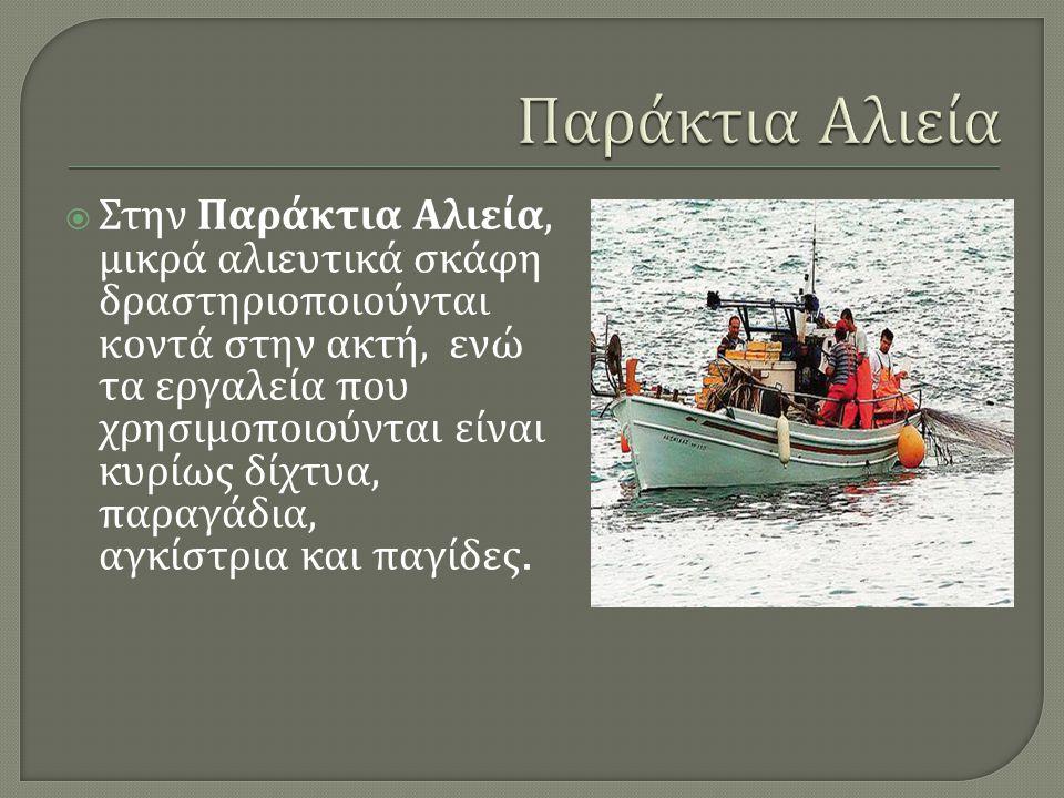  Στην Παράκτια Αλιεία, μικρά αλιευτικά σκάφη δραστηριοποιούνται κοντά στην ακτή, ενώ τα εργαλεία που χρησιμοποιούνται είναι κυρίως δίχτυα, παραγάδια,