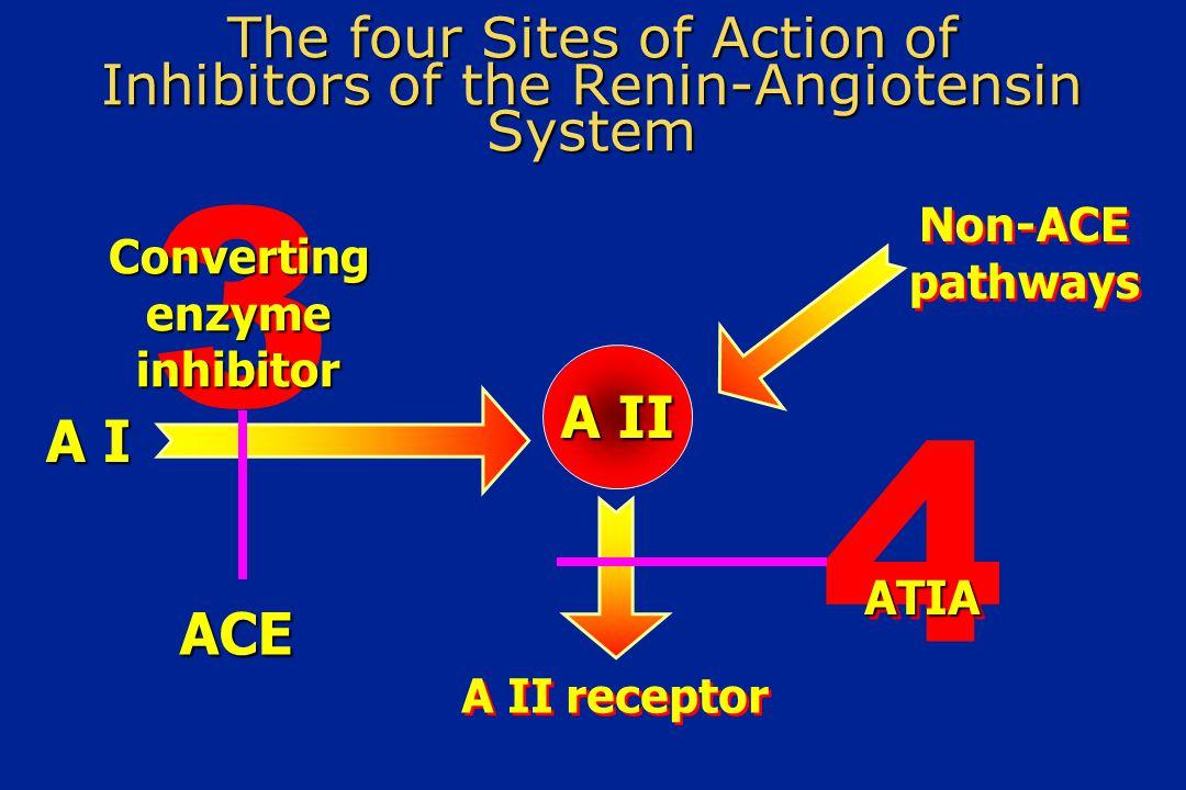 To σύστημα ρενίνης-αγγειoτασίνης- αλδοστερόνης (RAAS) Εναλλακτικές Ιστικές οδοί (καθεψίνη G, χυμάση κλπ) Αγγειοτασινογόνο Αγγειoτασίνη I Αγγειοτασίνη II ΑΓΓΕΙΟΣΥΣΠΑΣΗ Βραδυκινίνη Αδρανή προιόντα MEA AT 1 υποδοχείς στα αγγεία AT 1 Υποδοχείς στα Επινεφρίδια Νεφροί Ρενίνη Αρνητικό feedback Αυξημένηαρτηριακήπίεση Κατακράτηση Νατρίου Αλδοστερόνη