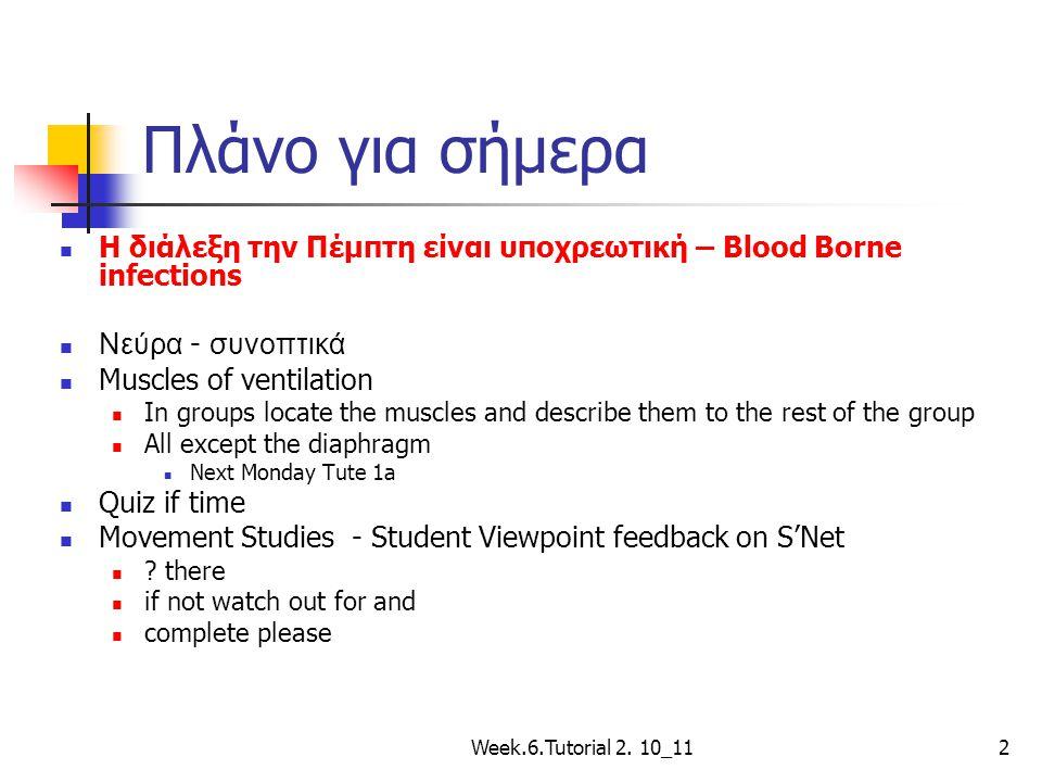 Πλάνο για σήμερα Η διάλεξη την Πέμπτη είναι υποχρεωτική – Blood Borne infections Νεύρα - συνοπτικά Muscles of ventilation In groups locate the muscles