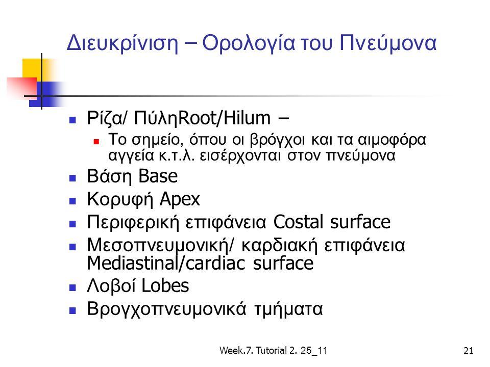Week.7. Tutorial 2. 25_11 21 Διευκρίνιση – Ορολογία του Πνεύμονα Ρίζα/ Πύλη Root/Hilum – Το σημείο, όπου οι βρόγχοι και τα αιμοφόρα αγγεία κ.τ.λ. εισέ