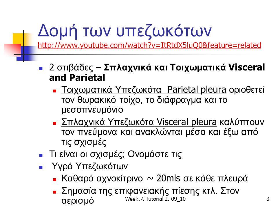 Τα υπεζωκότα http://www.youtube.com/watch?v=aLPDk8hnWD0&feature=related http://www.youtube.com/watch?v=aLPDk8hnWD0&feature=related Week.7.