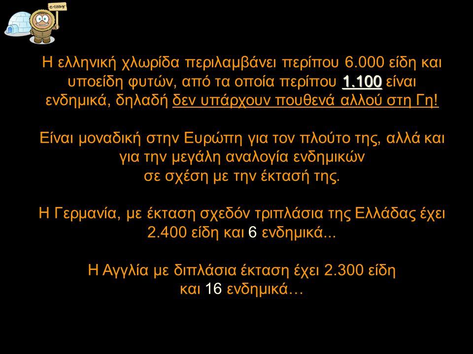 1.100 Η ελληνική χλωρίδα περιλαμβάνει περίπου 6.000 είδη και υποείδη φυτών, από τα οποία περίπου 1.100 είναι ενδημικά, δηλαδή δεν υπάρχουν πουθενά αλλού στη Γη.