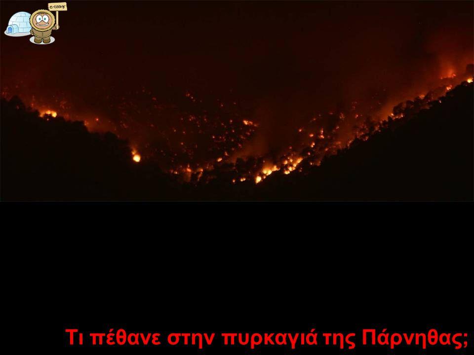 Τι πέθανε στην πυρκαγιά της Πάρνηθας;