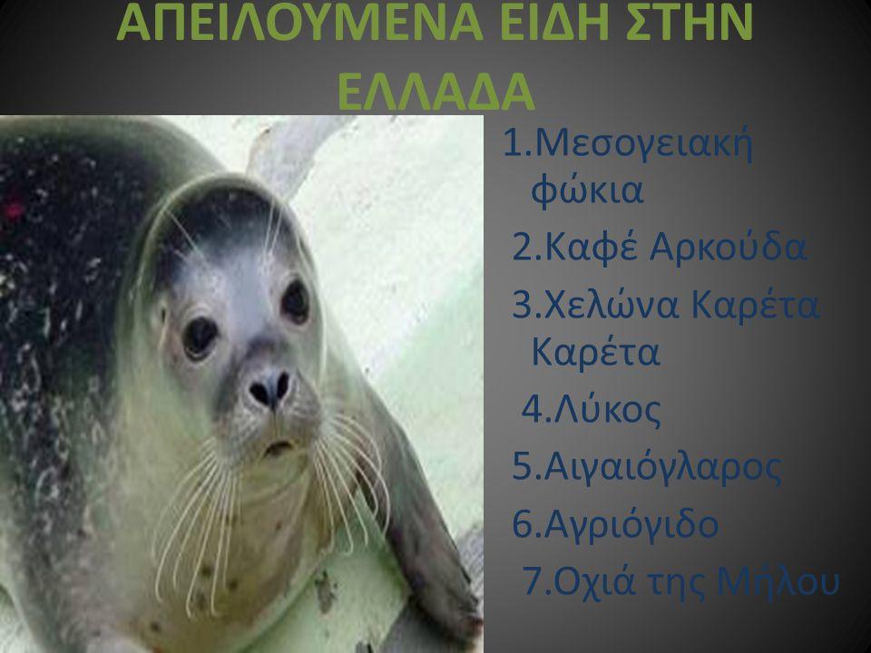 ΑΠΕΙΛΟΥΜΕΝΑ ΕΙΔΗ ΣΤΗΝ ΕΛΛΑΔΑ 1.Μεσογειακή φώκια 2.Καφέ Αρκούδα 3.Χελώνα Καρέτα Καρέτα 4.Λύκος 5.Αιγαιόγλαρος 6.Αγριόγιδο 7.Οχιά της Μήλου