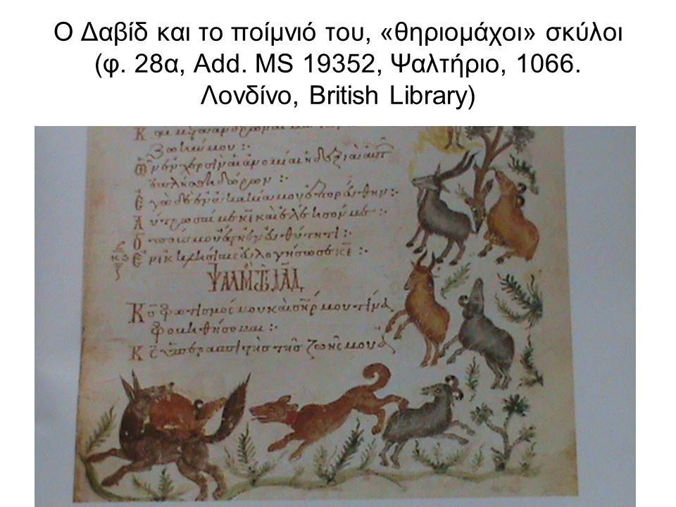 Τα ποίμνια του Ιώβ, ποιμενικοί σκύλοι (8α, κώδ. 3, τέλος 11 ου αι., Σινά, Μονή Αγ. Αικατερίνης)