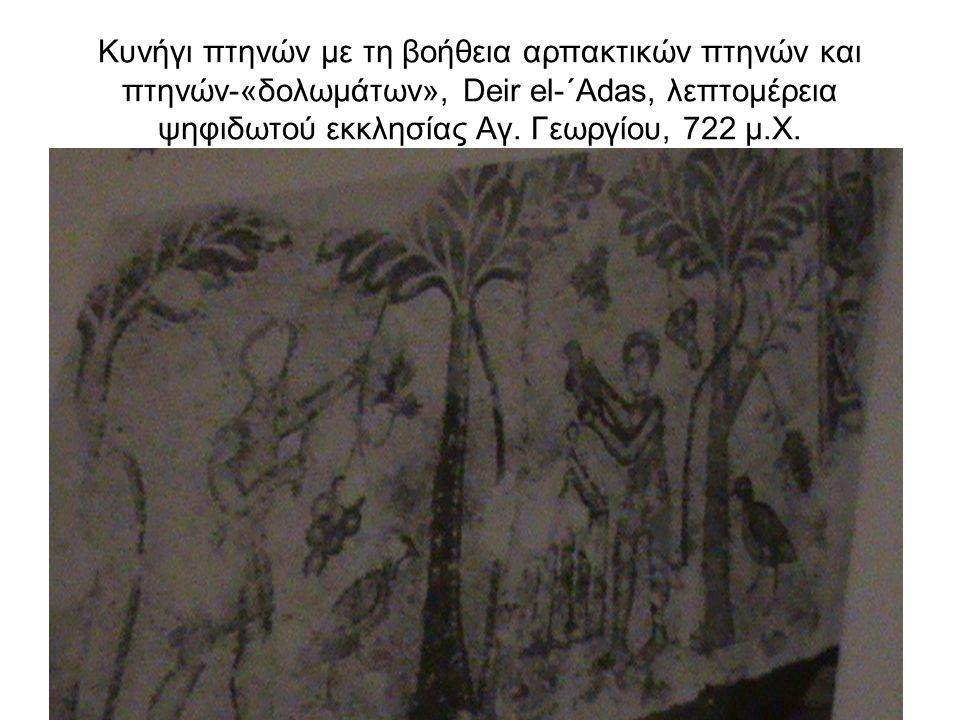 Κυνήγι με ειδικά εκπαιδευμένο γεράκι και κυνηγετικούς σκύλους (500 μ.Χ., ψηφιδωτό, από πρωτοβυζαντινή έπαυλη στο Άργος)