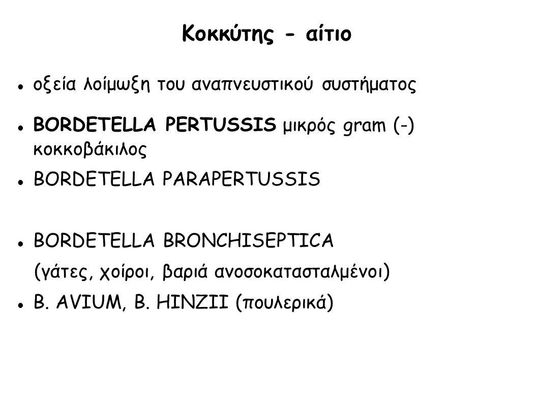 Κοκκύτης - αίτιο οξεία λοίμωξη του αναπνευστικού συστήματος BORDETELLA PERTUSSIS μικρός gram (-) κοκκοβάκιλος BORDETELLA PARAPERTUSSIS BORDETELLA BRON