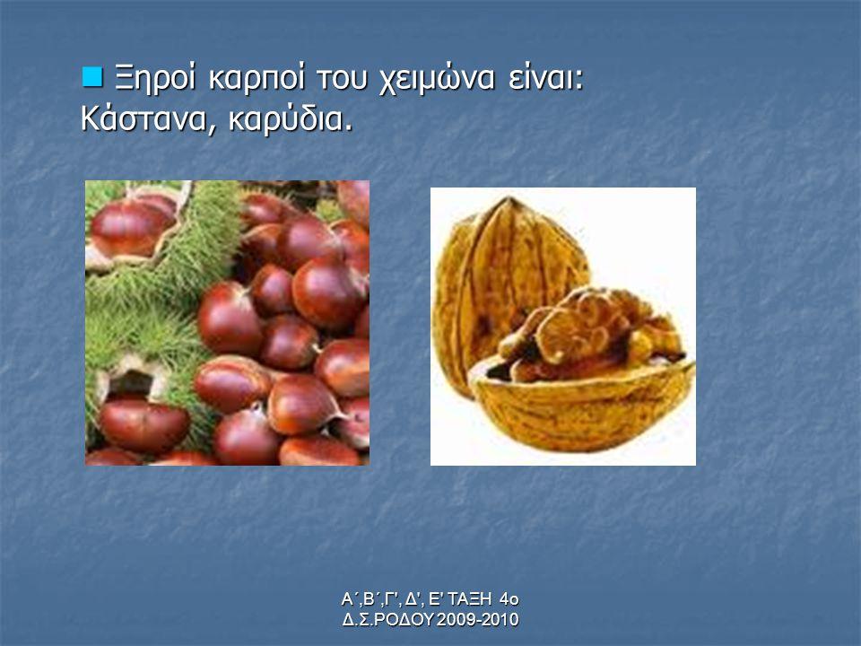 Α΄,Β΄,Γ , Δ , Ε ΤΑΞΗ 4ο Δ.Σ.ΡΟΔΟΥ 2009-2010 Ξηροί καρποί του χειμώνα είναι: Ξηροί καρποί του χειμώνα είναι: Κάστανα, καρύδια.