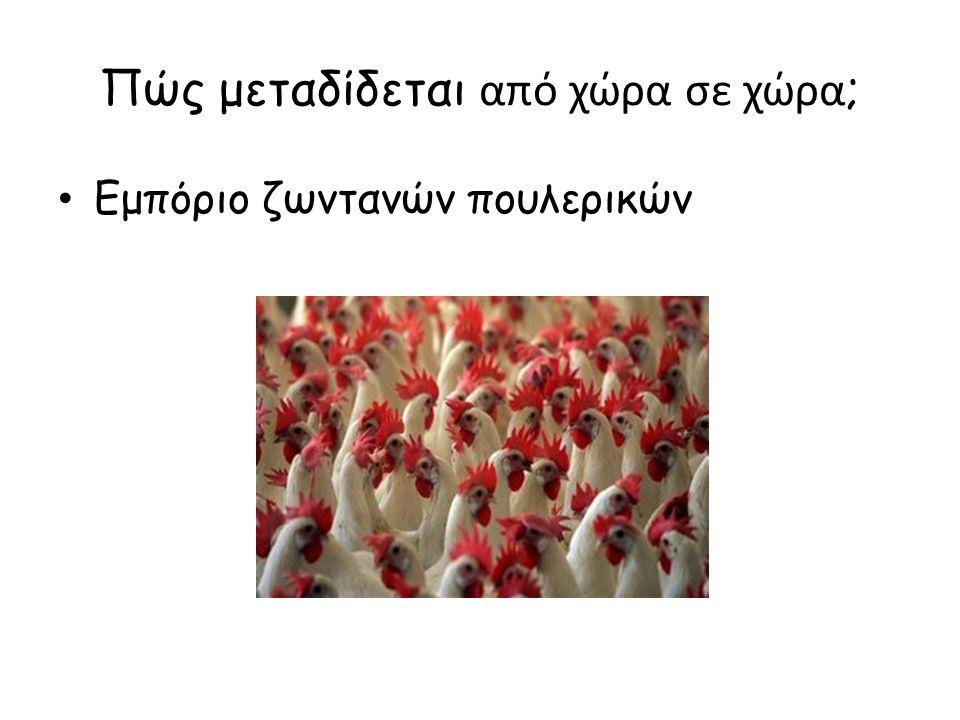 Πώς προσβάλλονται οι άνθρωποι; Τα μολυσμένα πτηνά (άγρια και κατοικίδια) αποβάλλουν μεγάλες ποσότητες του ιού στις εκκρίσεις τους Μολύνουν το χώμα, τα κλουβιά, το ρουχισμό (ιδίως τα υποδήματα)