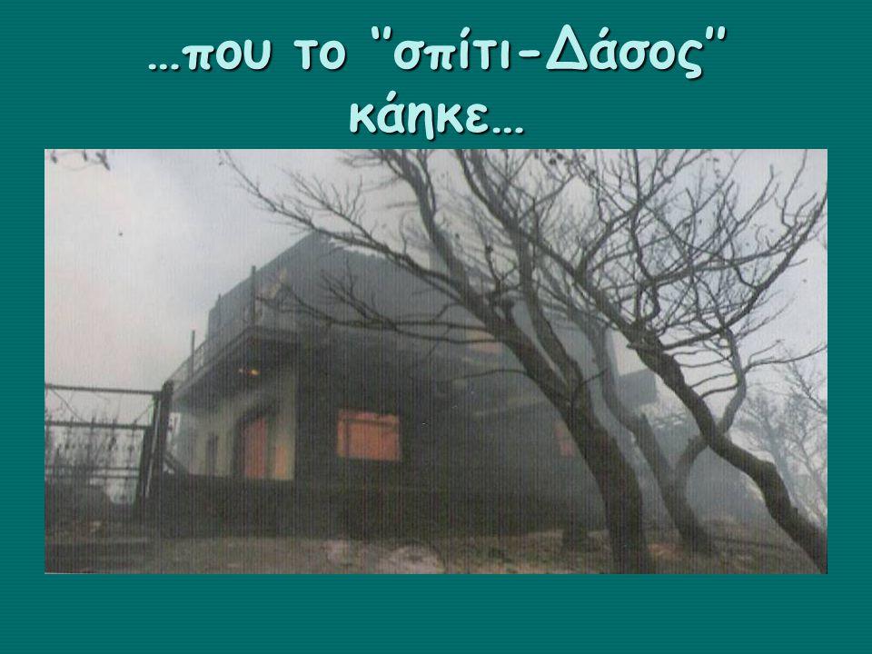 …που το ''σπίτι-Δάσος'' κάηκε…