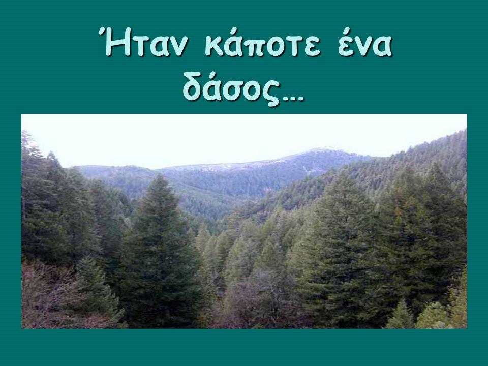 Ας προστατέψουμε τα δάση η ανάσα μας ! είναι