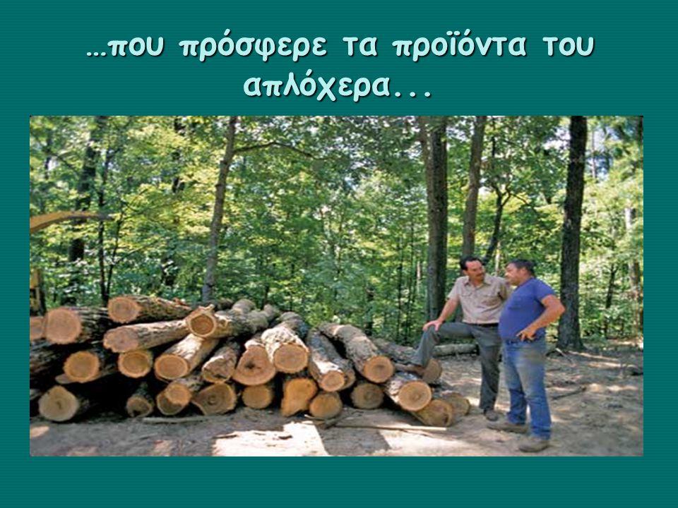 …και ένα δάσος καμένο