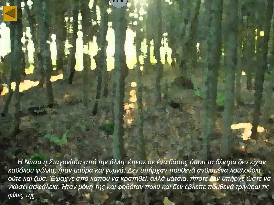 Η Νίτσα η Σταγονίτσα από την άλλη, έπεσε σε ένα δάσος όπου τα δέντρα δεν είχαν καθόλου φύλλα, ήταν μαύρα και γυμνά. Δεν υπήρχαν πουθενά ανθισμένα λουλ